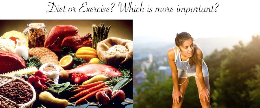 Diet or Exercise: Which is more important?